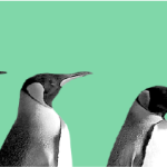 Best Languages to Learn as a Linux SysAdmin
