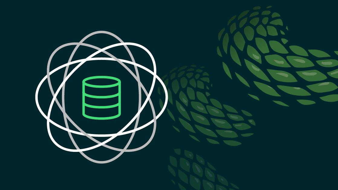 Why Data Scientists Love Python
